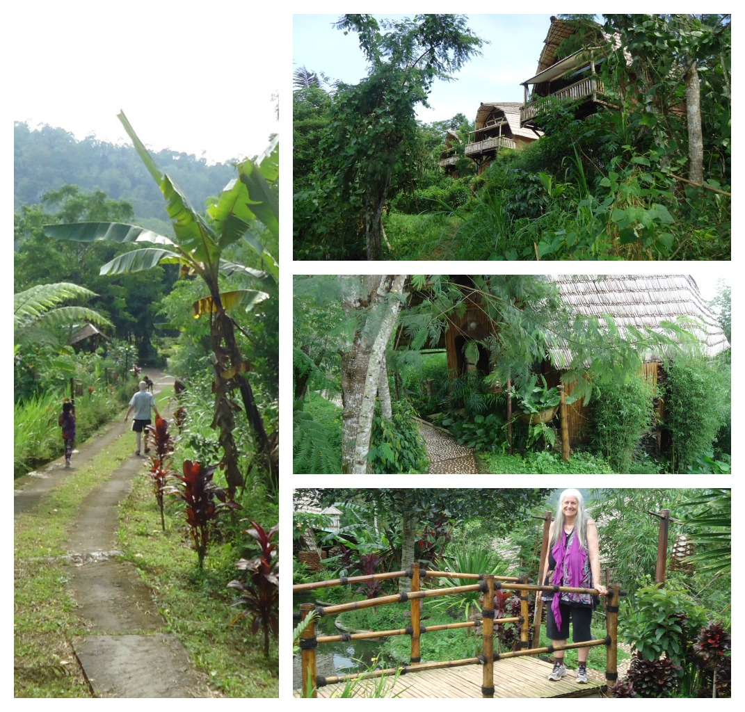 Ecovillage Collage