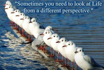 look-at-life-from-a-different-perspective